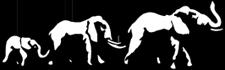 Big Family Movers Logo