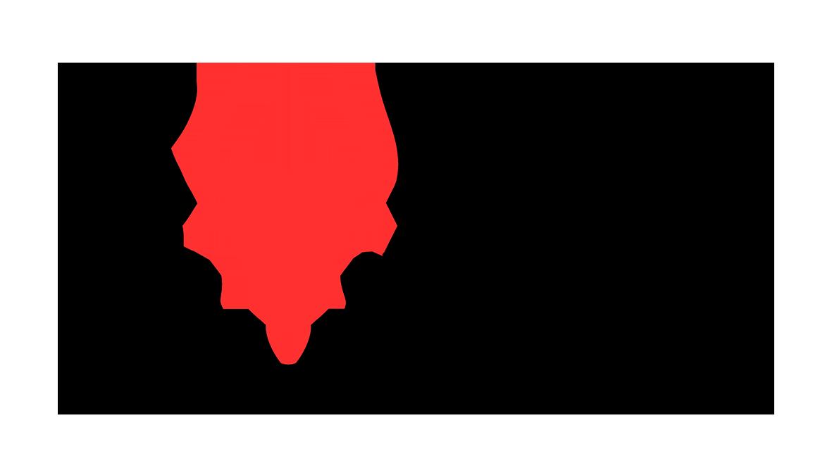 Bulls Moving Logo