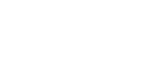 Camelot Moving & Storage Logo