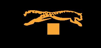 Cheetahs Movers Logo