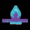 Southern Extreme Details LLC Logo