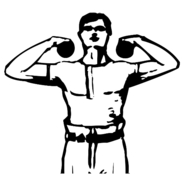 Local Muscle Movers Logo