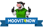 Moovit4now - Moving Company Logo