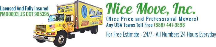 Nice Move Inc. Logo