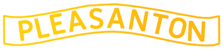 Professional Movers Pleasanton Logo