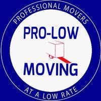 Pro-Low Moving Logo